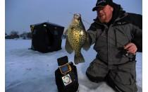 Полезная информация о подводных камерах для рыбалки